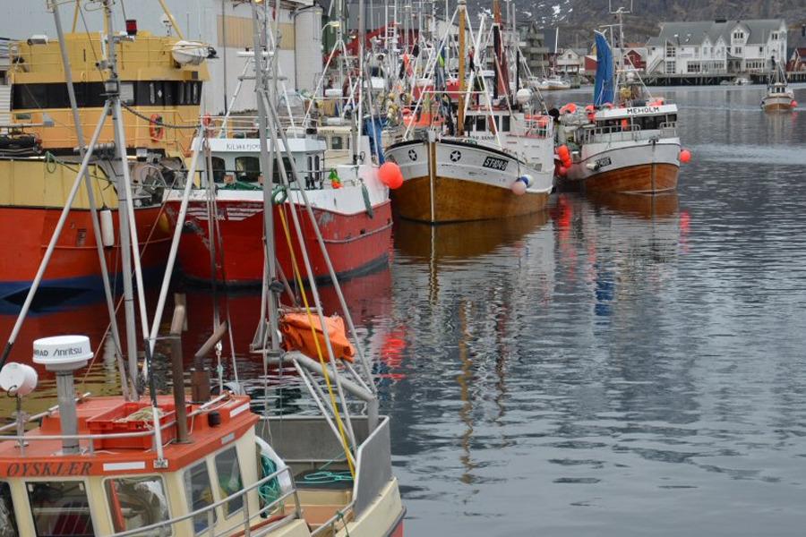 20131206_fiskebater-1.jpg