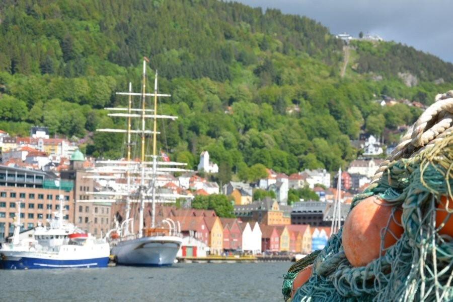 Om Sør-Norges Notfiskarlag
