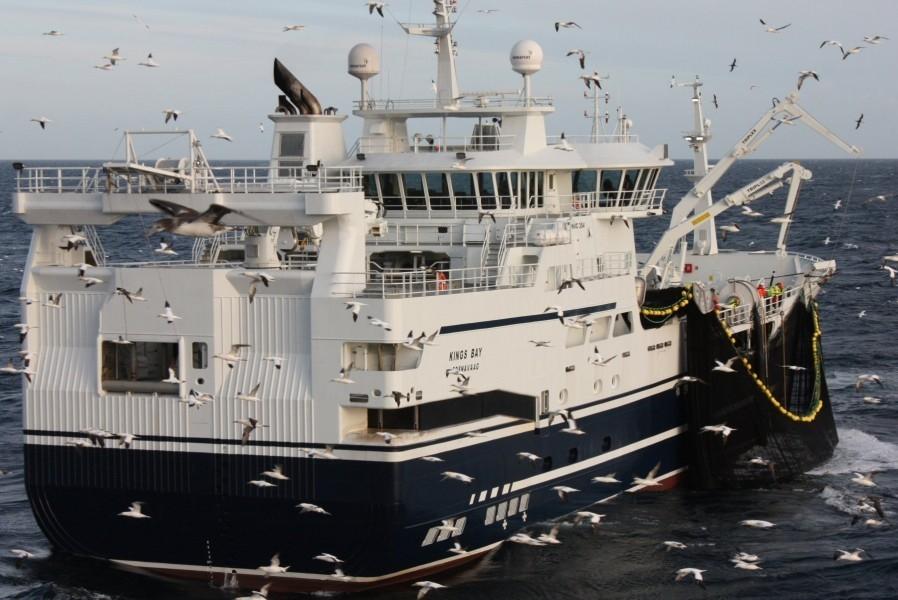 Makrellkvote på 922 000 tonn