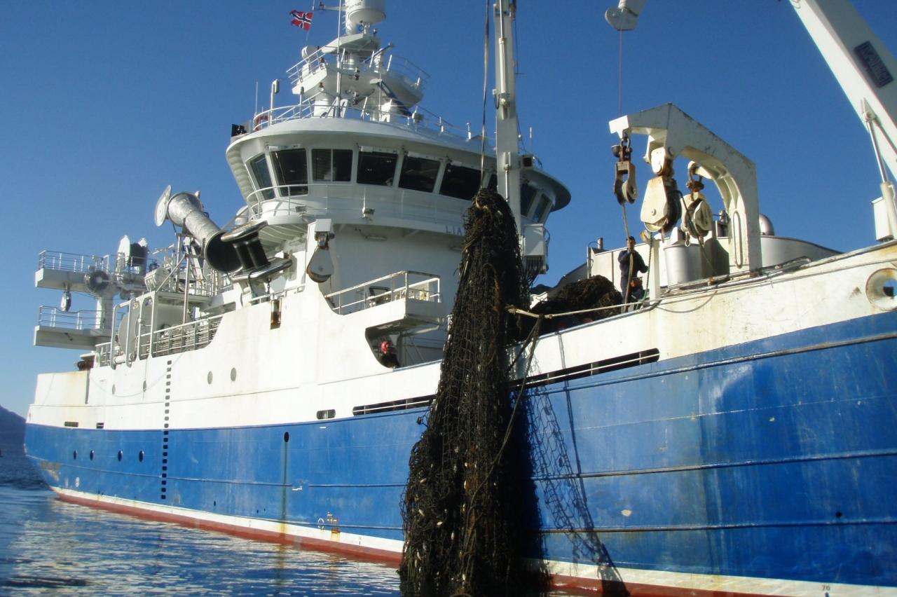 Vil leie havgående fartøy