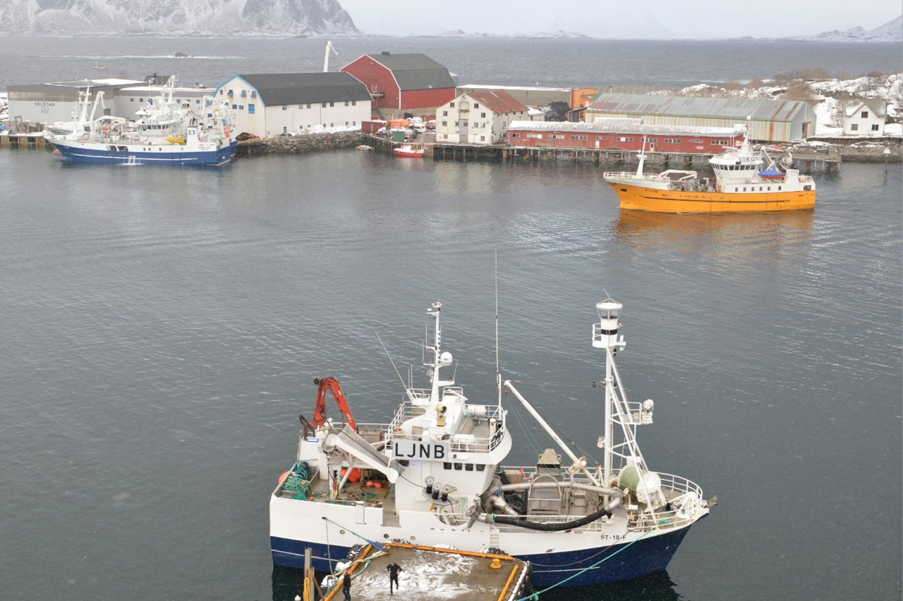 Krever havnegjennomgang